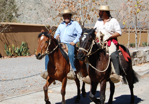 Elqui Valley Horsemen